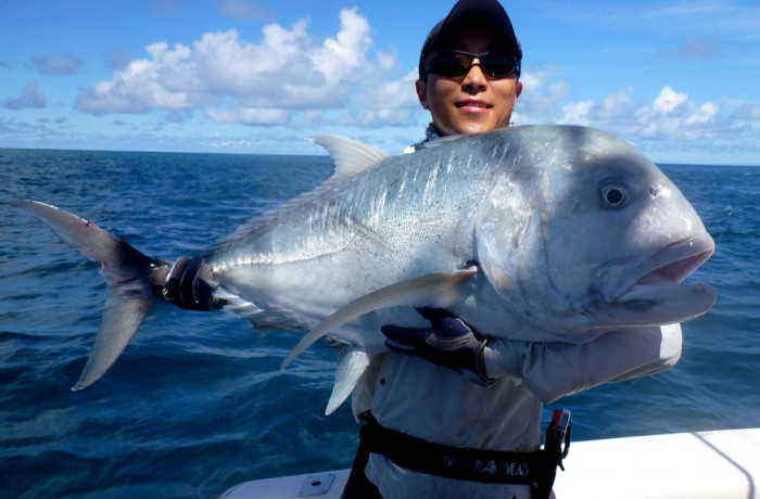 Giant Trevally – GT